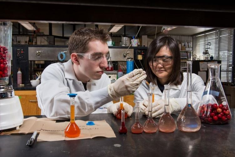 students working in Cranberry Health Research lab